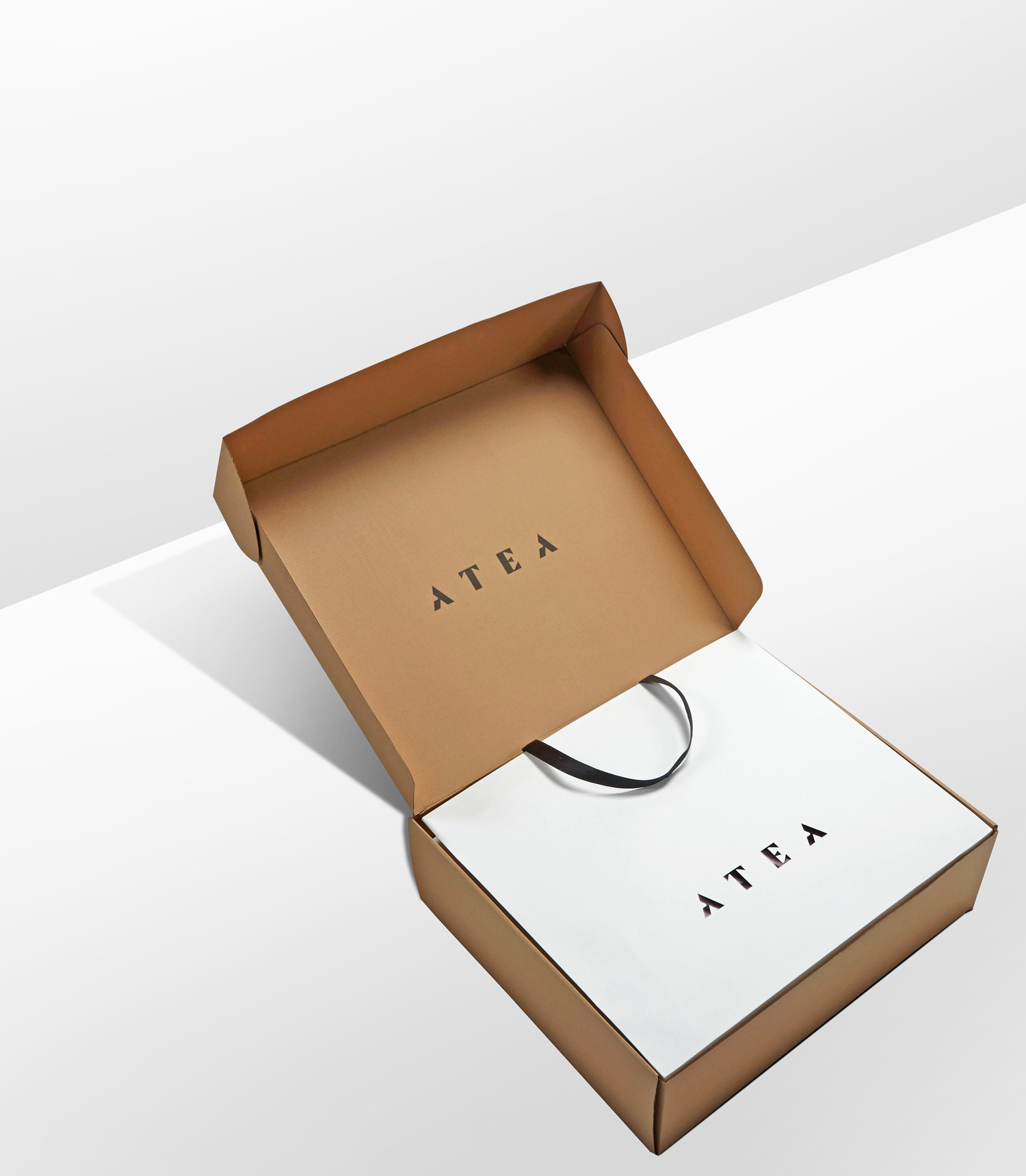 Progress Packaging Atea Carrier Bags Luxury Fashion Ecommerce Corruagated
