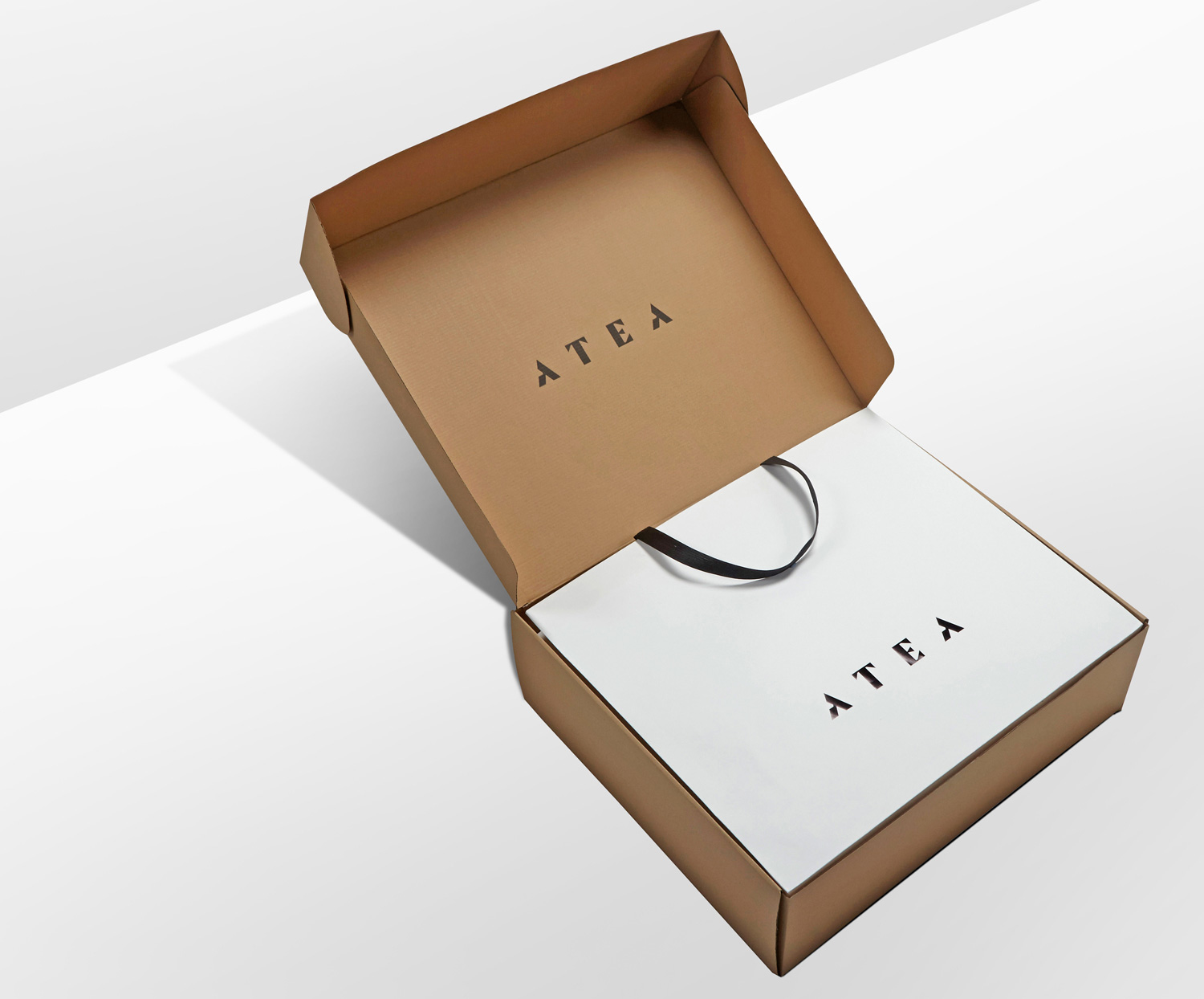 Progress Packaging Atea Carrier Bags Luxury Fashion Ecommerce Paper Clean Simple