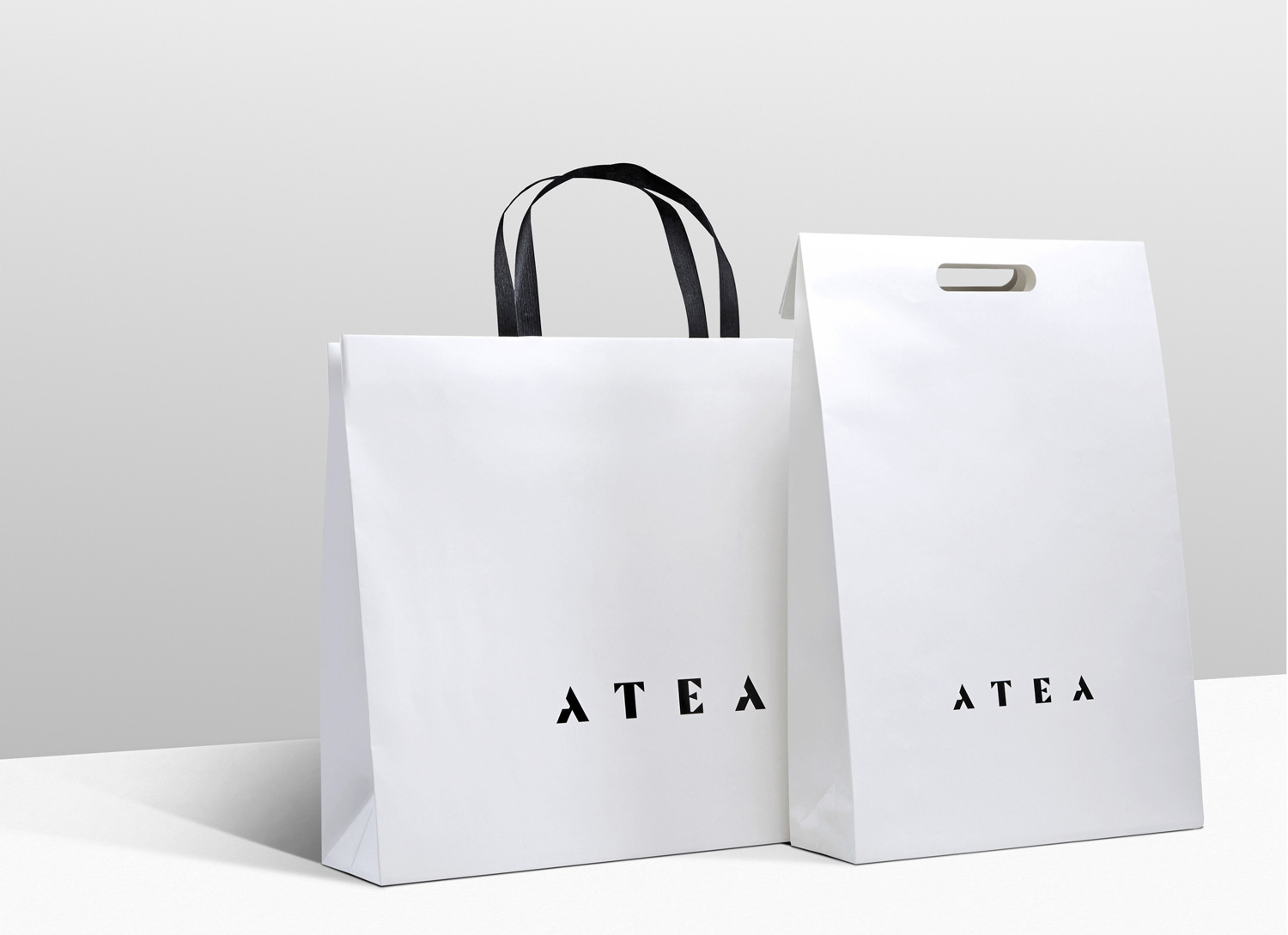 Progress Packaging Atea Carrier Bags Luxury Fashion Paper Clean Simple