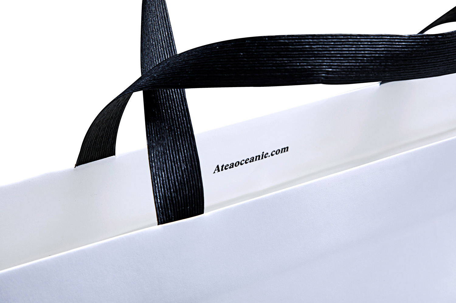 Progress Packaging Atea Luxury Fashion Handles Eco Friendly Twist