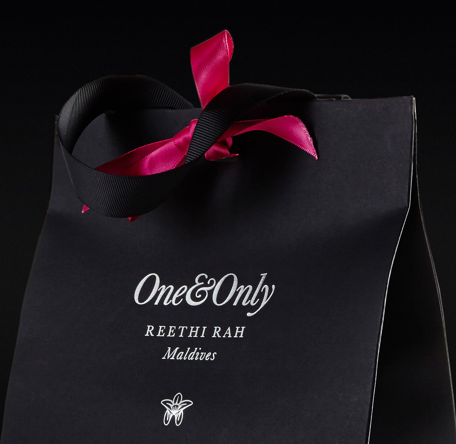 Progress Packaging OneOnly Carrier Bags Luxury Property Closure Ribbon Tied