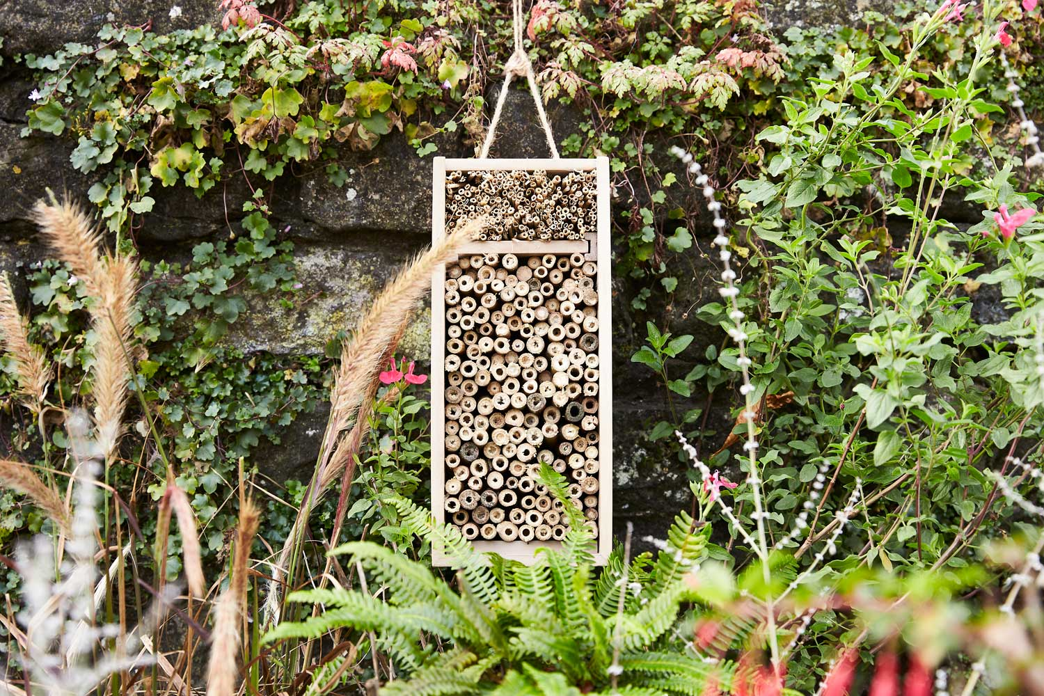 Progress Packaging Wooden Bird Box Insect Hotel Drinks Gin Spirits Liquor Fsc Approved Recycled Biodegradable Reusable Upcycling Responsibly Sourced Eco Friendly Environmentally Friendly 4