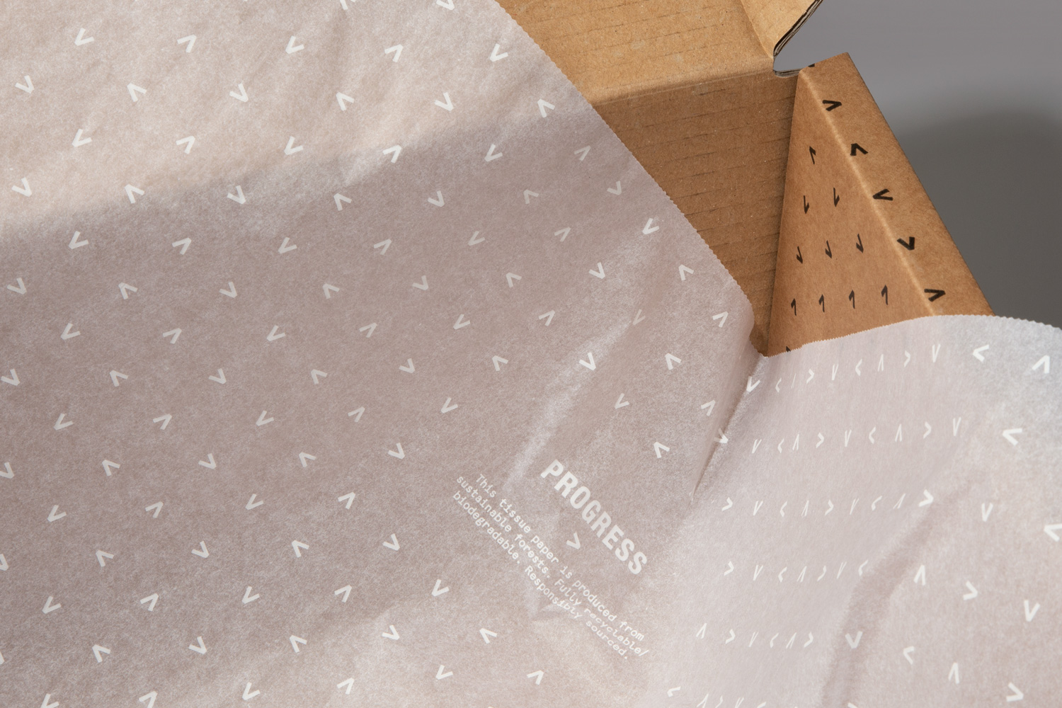 Progress Packaging Packing Tissue Recyclable Box Paper Protective Branded Eco Friendly Printed Retail Shipping E Commerce Durable Custom Made Bespoke Carton 1